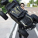 Tastak 4WD Off-Road Rock-Fahrzeug 2,4 GHz Fernbedienung Auto-Maxi-LKW-Spielzeug RC Car Im Freien Klettern Lade Rennwagen for Kinder und Erwachsene (Color : Black)